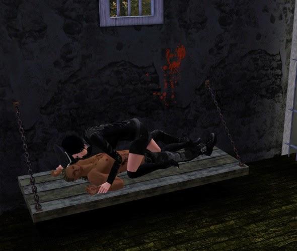 Sims 3 modern torture cc